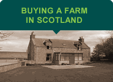 buying a farm in scotland