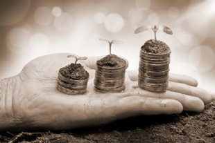 hands and soil for benefits header