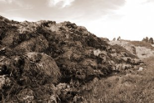 manure heap for waste management tab